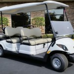 6 passenger fleet golf cart